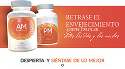 AM PM Essentials Landing Page